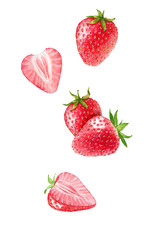 Hand drawn watercolor illustration of the different flying strawberry isolated on the white background.
