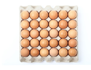 fresh chicken eggs in tray isolated clipping path.
