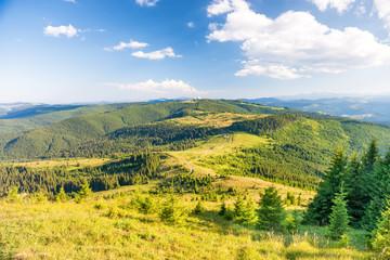 Foto op Plexiglas Heuvel Landscape with green sunny hills