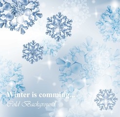 Winter card with snowflakes. Blue frost ice backgrounds