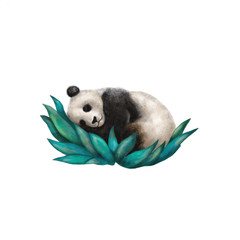 Digital illustration of a panda resting in a bush isolated on white background