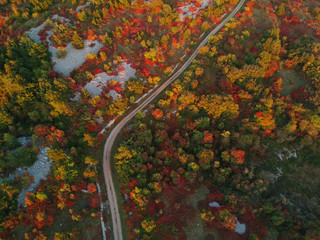 Karst in autumn from above aerial photo