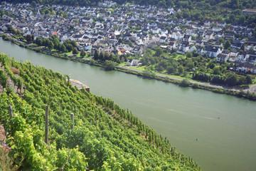 Mosel bei Koblenz-Lay
