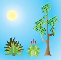 Tropical Plants Vector file