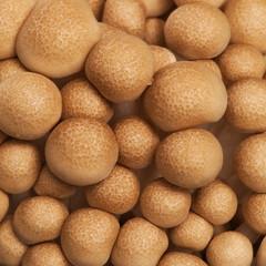 Chiodoni Mushroom Tops, Brown