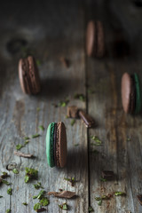 Chocolate and Mint Macaroons