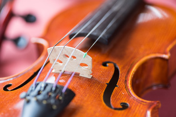 Violin close-up abstract showing bridge and body structure