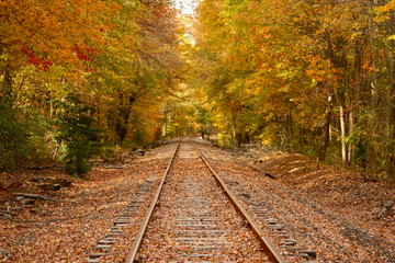 railroad fall pathway