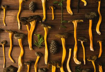 Yellow Foot mushrooms