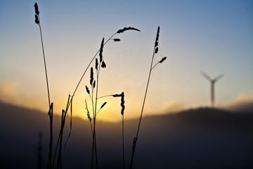 Silhouette of a windmill in sunrise light