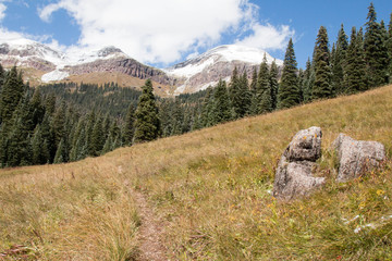 West Lime Creek trail in the San Juan National Forest