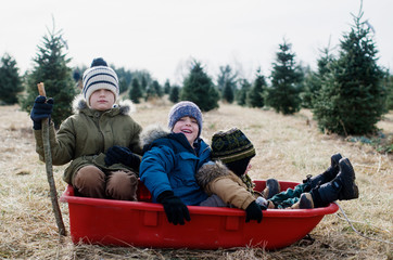Boys in a Sled