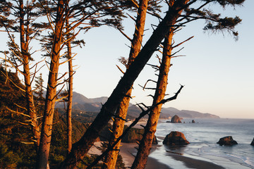 View of Oregon coastline at dusk, Cannon Beach and Pacific Ocean in distance