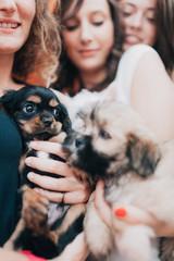 Friends Adopting a Puppy