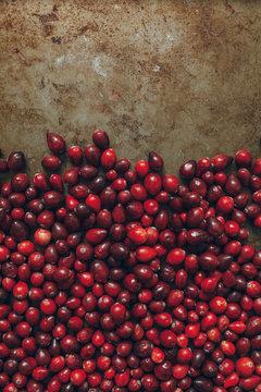 fresh cranberry background