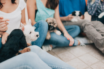 Friends Sitting On the Floor Playing With Puppies