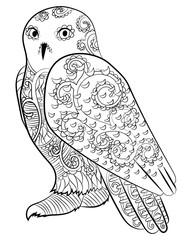 Snowy owl in the zentangle style.