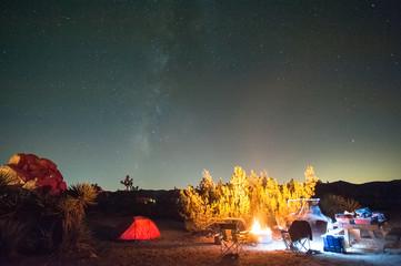 Joshua Tree Campsite