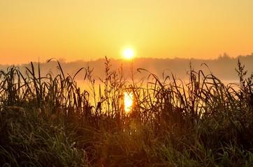 Deurstickers Bruin Beautiful autumn landscape. Sunrise over the lake.