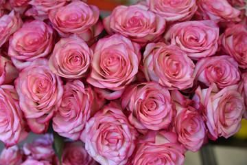 Roses en bouquet