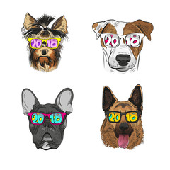 Dog wearing sunglasses, Year of the dog 2018. Fashion vector illustration.