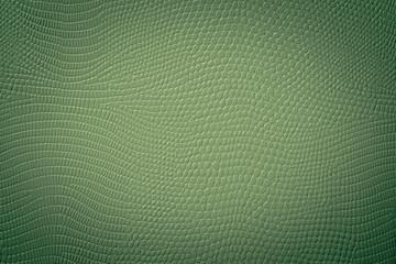 Grüne Textur einer Schlangen Haut Prägung