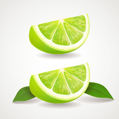 Slices of lime isolated icon . Realistic vector illustration