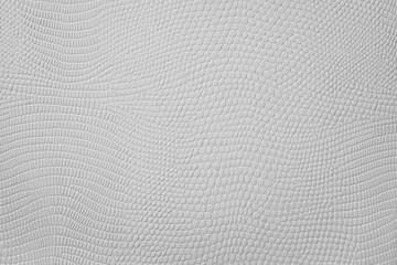 Grey Snake Skin Texture