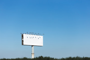 White Billboard Against the Blue Sky