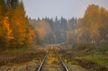 Railroad to the beautiful autumn.