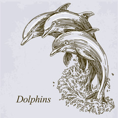 Group of dolphins jumping in the water. Vector illustration.