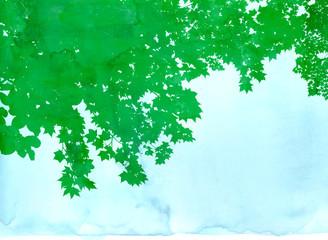 水彩風 緑の樹の背景