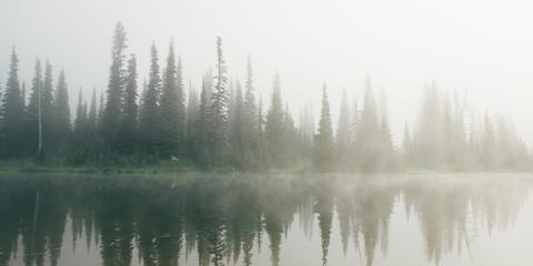 Foggy lake at Mt. Rainier