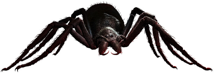 Giant spider Wall mural