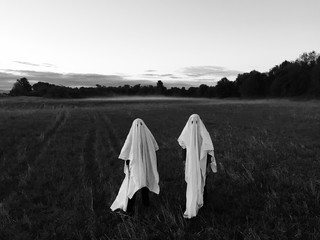 Two Ghost Standing in Field