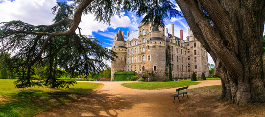Foto op Plexiglas Kasteel One of the most beautiful and mysterious castles of France - Chateau de Brissac ,Loire valley