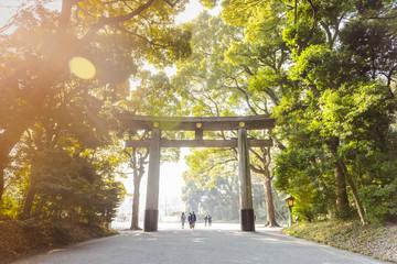 Sunny morning in Tokyo