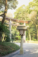 Environment in the Yoyogi park of Tokyo