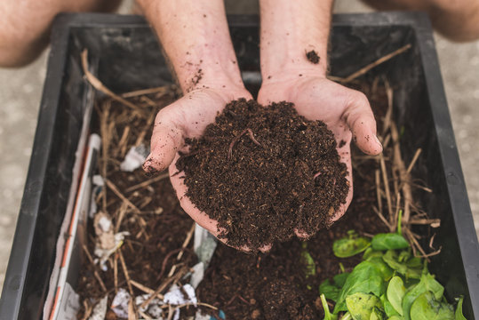 A Close Up Of A Man Holding Compost And Worms