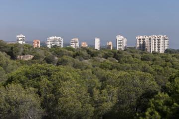 Buildings behind a park, Spain