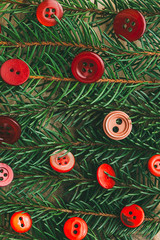 Christmas decoration. Pine branches and red buttons