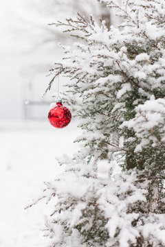 Red Christmas Ornament hanging from snow covered pine tree