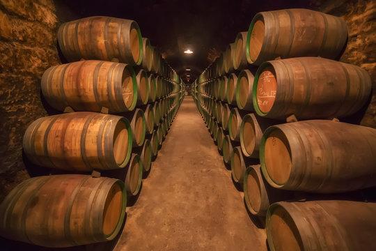 Barrels row in a Rioja winery in Alava