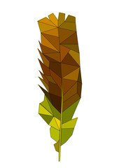 Isolated gold feather in polygon graphics
