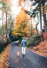 Man walks with beagle dog in rainy autumn day