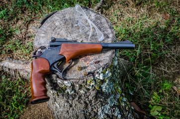 Gun, 22 bull barrel single shot. Hunting or target shooting equipment, fun outdoor sport recreational activity.