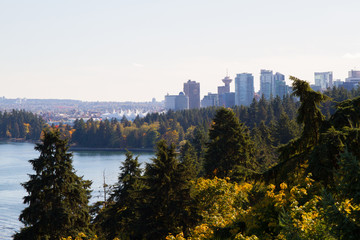 Wall Mural - Stanley Park and Vancouver Skyline