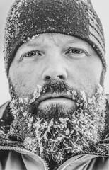 snowy beard