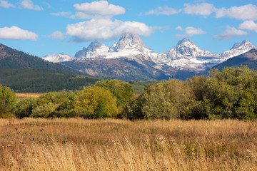 Wall Mural - Grand Teton Mountains