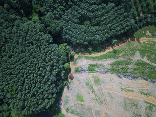 Deforestation. Aerial photo of logging in Thailand. Rainforest destroyed for palm oil plantations